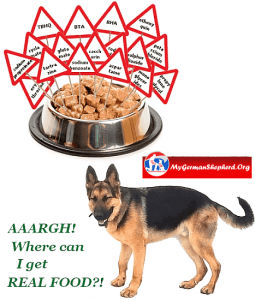 Dog-Food-Analysis_chemicals-no-food